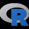 R Statistical Data (RDATA) Raster logo