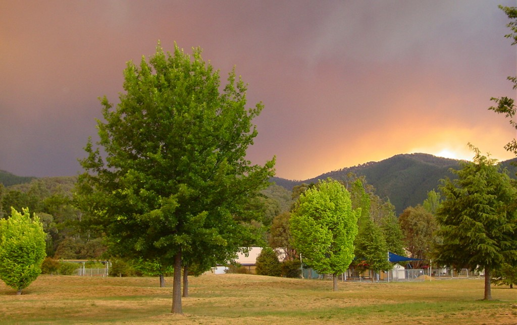 Barrett's view from the Alpine Shire Council offices as the 2006 bushfire threatened the local mountainside.