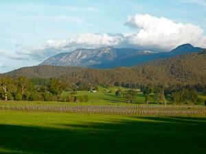 Mount Buffalo in Alpine Shire