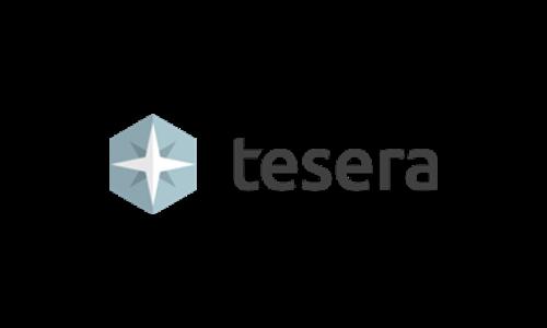 Tesera Systems徽标